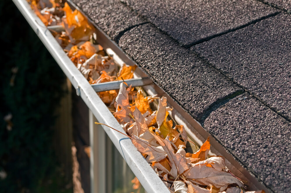 Clogged Gutters Can Cause These 8 Problems Wizard Rain