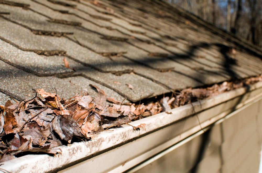 How to Avoid Leaf Blockage in Your Rain Gutters
